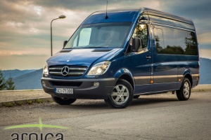 Mercedes Sprinter VIP (8+1)